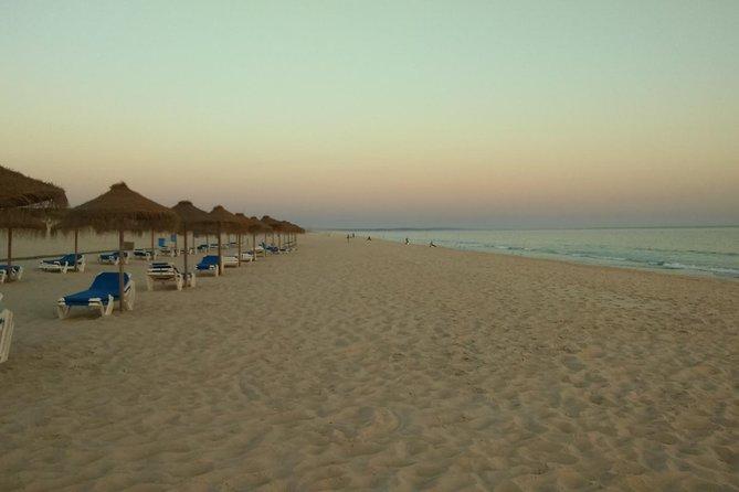 Private Tour to Alentejo coast, Comporta beach, Alcacer do Sal and Setubal