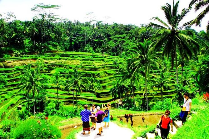Tripadvisor 2 Days Best Of Bali Famous Tour Packages Provided By Star Bali Tour Day Tours Denpasar