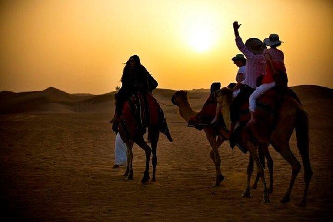 Overnight Camel Caravan with BBQ Dinner and Arabic Breakfast