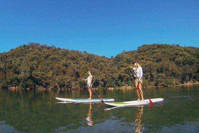Ku-ring-gai Chase National Park Stand Up Paddleboard Tour