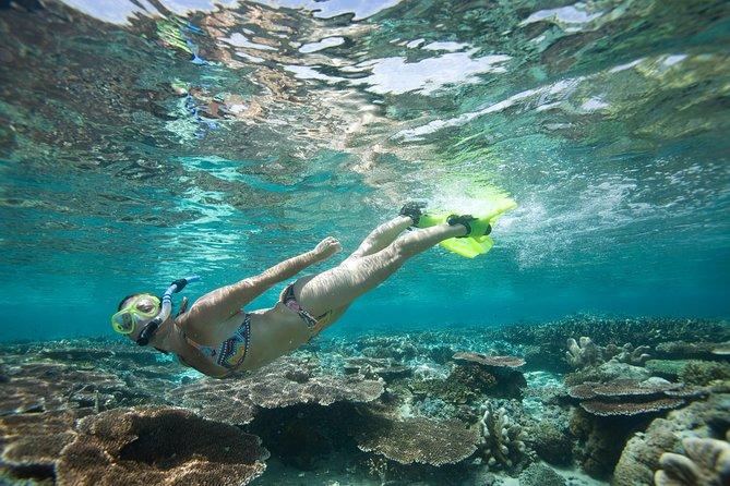 Snorkeling Package at Padang Bai Blue Lagoon