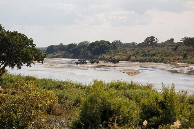 Kruger National Park - 3 Days (Open Vehicle) - Rondawels