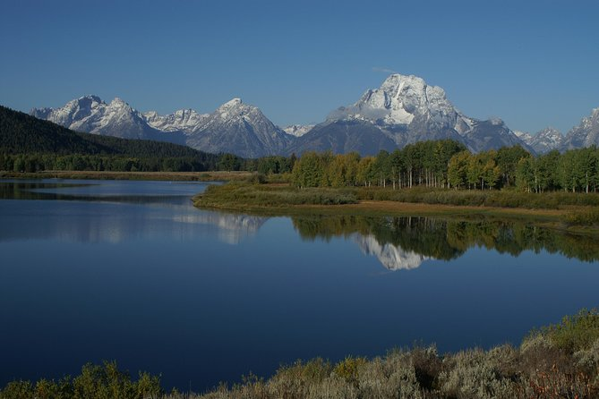 Grand Teton Wildlife Tour from Jackson Hole - Private Options Available
