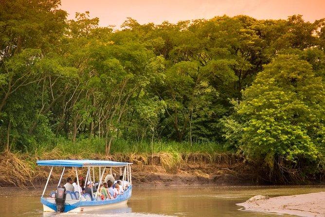 Palo Verde Boat Safari