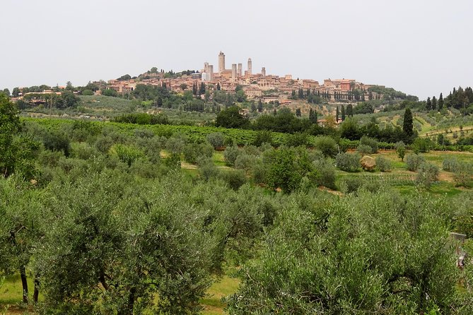 Private VIP Exclusive Tour to Siena and San Gimignano with Wine Tasting & Lunch