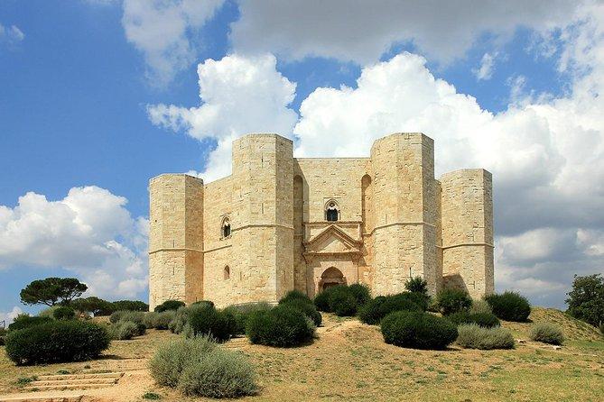 Trani, Wine Tasting, and Castel Del Monte tour from Bari or Ostuni