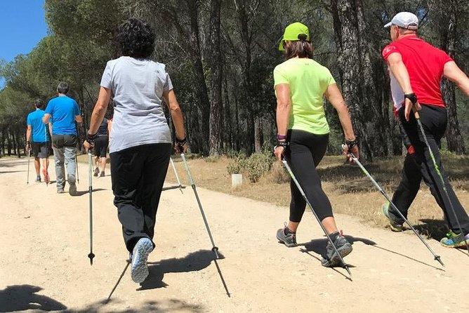 Nordic Walking in Madrid National Park