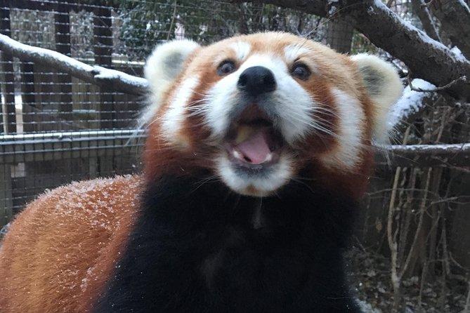 Skip the Line: Miller Park Zoo General Admission Ticket