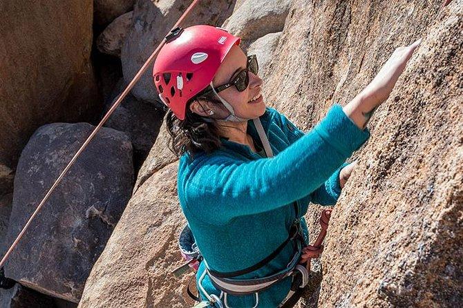 Rock Climbing Trips in Joshua Tree National Park (4 Hours)