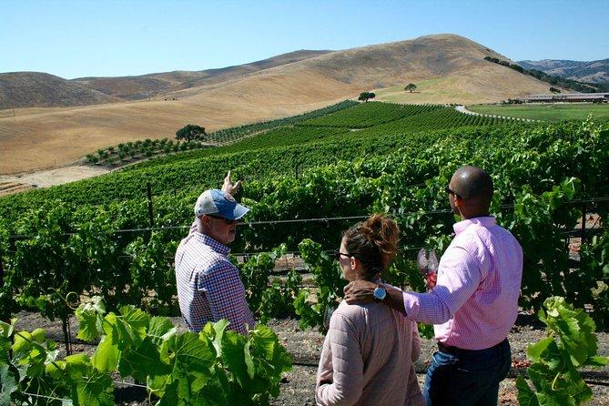 Private Santa Barbara Small-Production Wine Tour