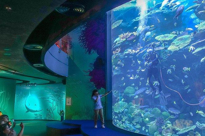 Bangkok Sea Life Aquarium with 4D Movies