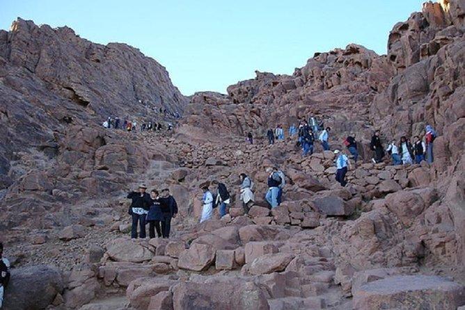 Mount Sinai Climb And St Catherine Tour From Sharm El Sheikh Provided By Egypt Tours Club South Sinai Tripadvisor
