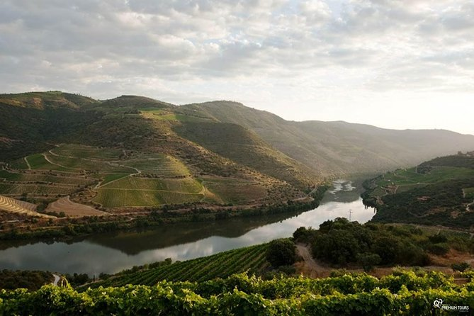 Our magnificent Douro Valley