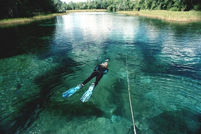 Snorkel Or Dive The Amazing Rainbow River Florida
