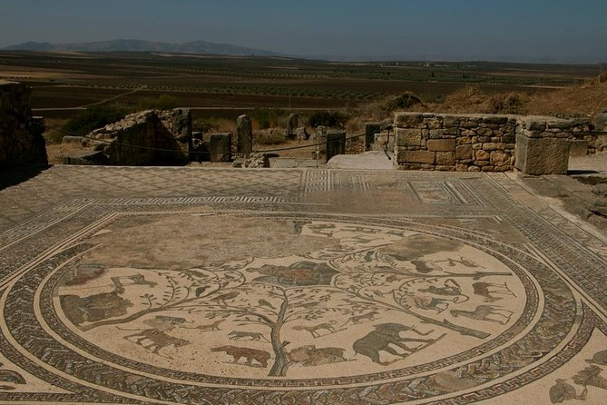 Private Tour from Fez: Meknès and Roman Ruins of Volubilis