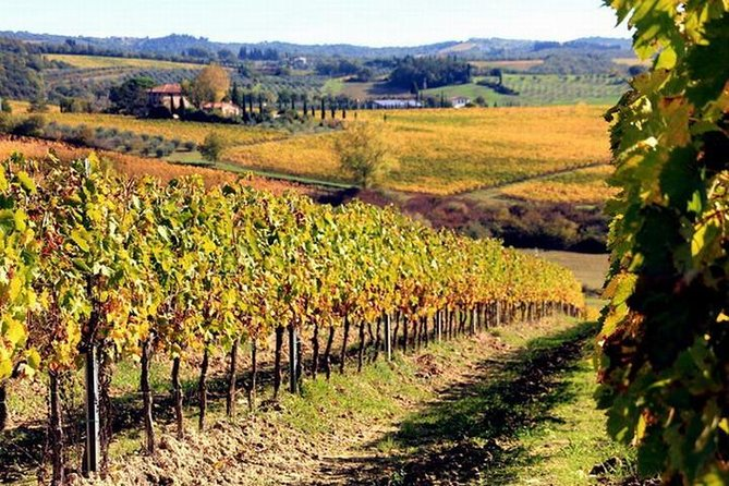 Wine tasting in Chianti, visiting Castellina, in Tuscany from Rome