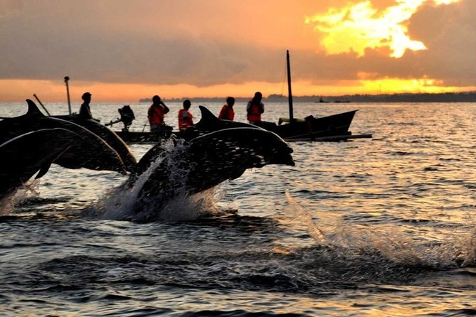 Bali Dolphin Watching Tour in Lovina Ocean
