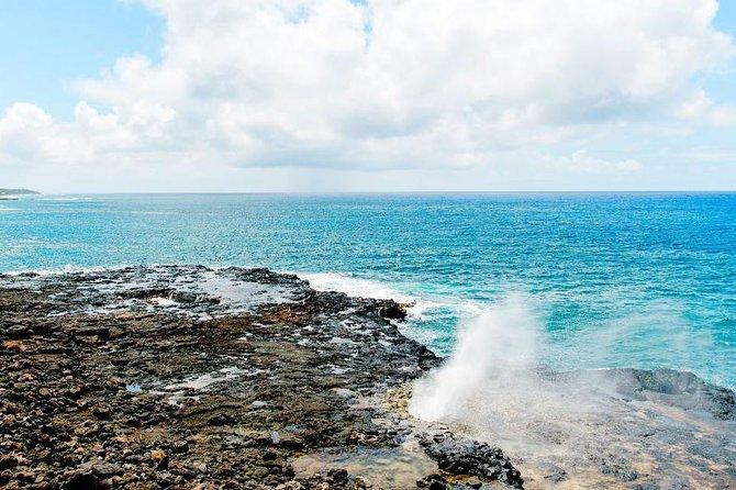 Secret Kauai Tour