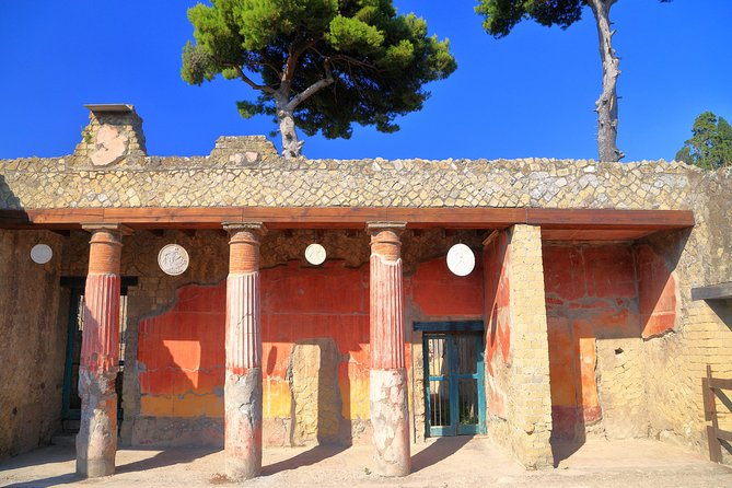 Pompeii and Herculaneum Private Walking Tour with an Archaeologist