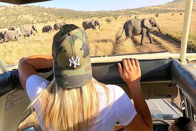 4 Days Serengeti, Manyara, Ngorongoro Safari Tour