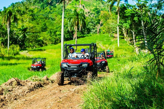 Jungle Buggies and Monkeyland from Punta Cana