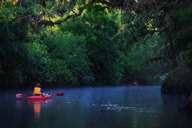 Econlockhatchee River Kayak Tour