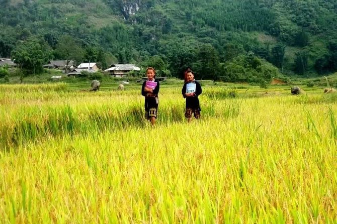SAPA TREKKING TOUR BY BUS (two nights in hotel)
