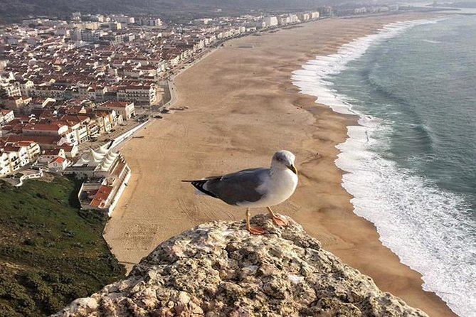 Fatima Batalha Nazare Obidos Full-Day Group Tour from Lisbon
