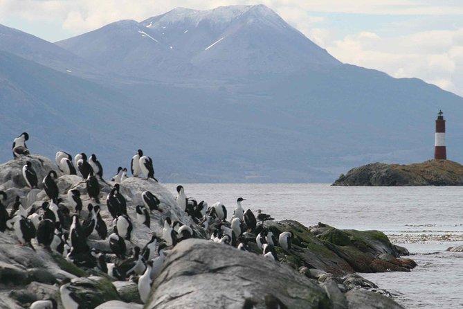 Beagle Channel and Seal Island Catamaran Tour from Ushuaia