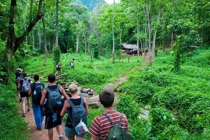 2 Days - The Cuc Phuong Wildlife Interesting Experience