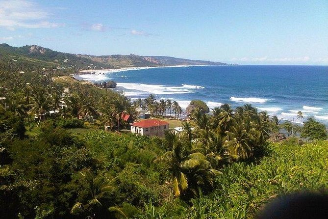 Caves Of Barbados & Scenic Tour