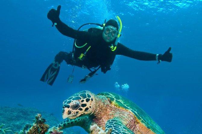 St Maarten Scuba Diving for Certified Divers