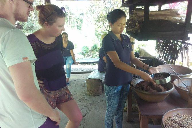 Bali Coffee Tour with Coffee Testing