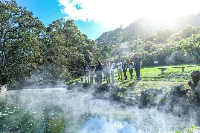 Katoa Jet Boat & guided tour of the sacred Mokoia Island