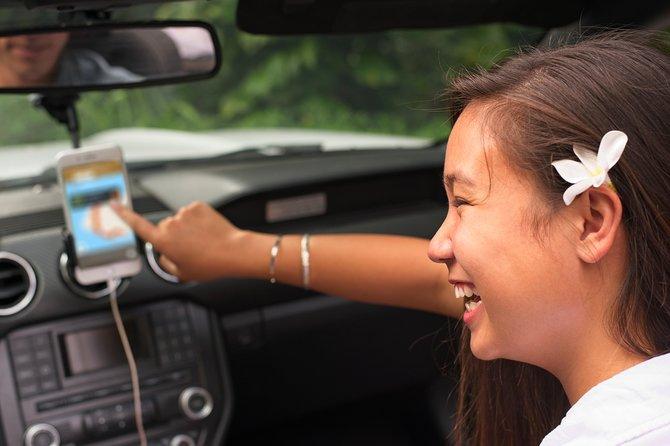 Big Island - South Island Coastal Loop Driving Tour