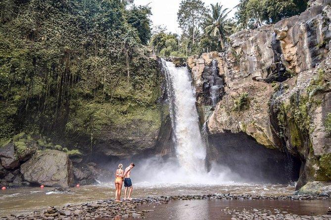 Ubud City Tour I: Monkey Forest, Ubud Palace, Art Market, and Waterfall