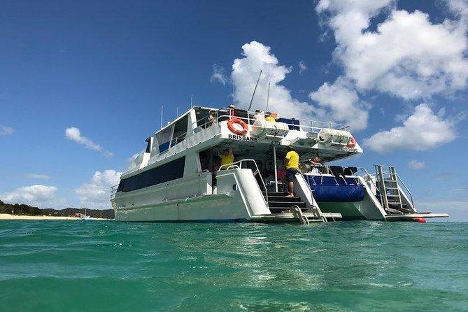 Eco Marine Safari - Boom netting & Snorkeling Moreton Island - Fortitude Valley