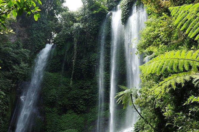 Sekumpul Waterfalls Hiking Tour with Ulun Danu Bratan Temple