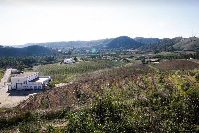 Premium Wine and Gastronomic Mountain Tour in The Algarve