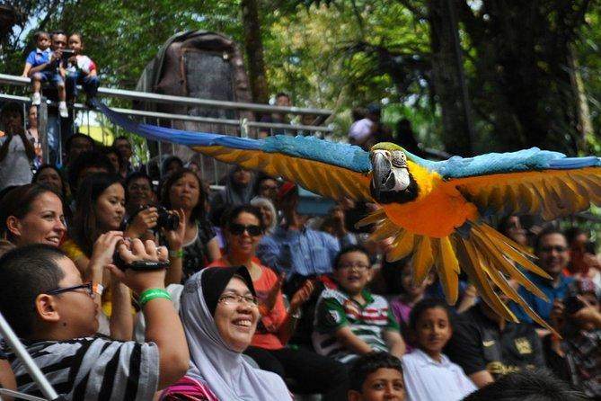 Kuala Lumpur Bird Park Admission Tickets & Free Shopping Tour