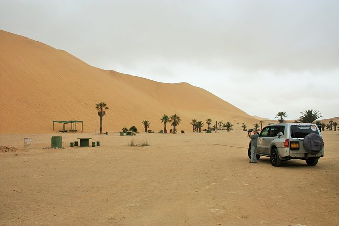 Swakopmund Town Tour- Including Dune 7( Shore Excursion)