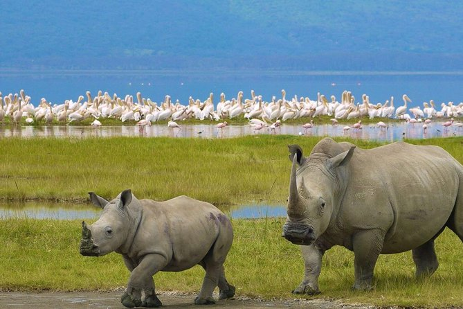 9 Days Mombasa Safari Package - Coast & Mara Circuits