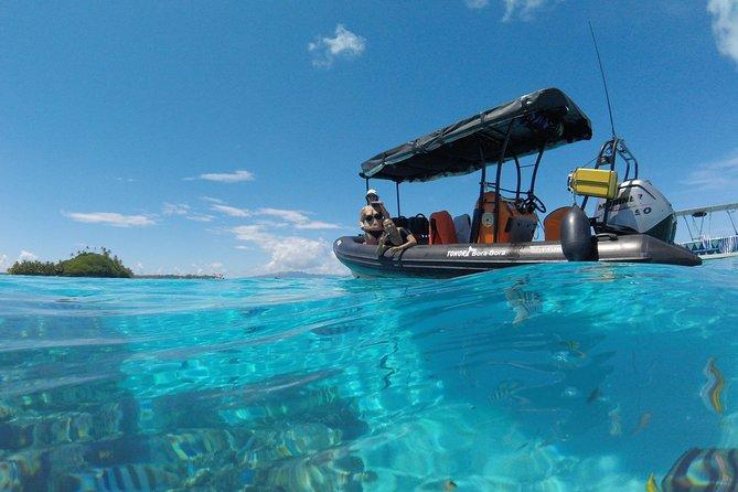 Tohora Bora Bora Snorkeling Lagoon Tours