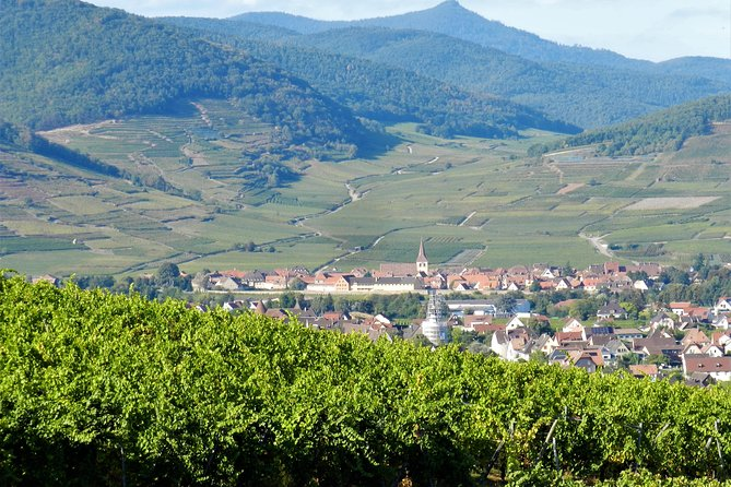 VIP TOUR from Colmar: 1/2 day, Wine route, Villages & Tasting (option)
