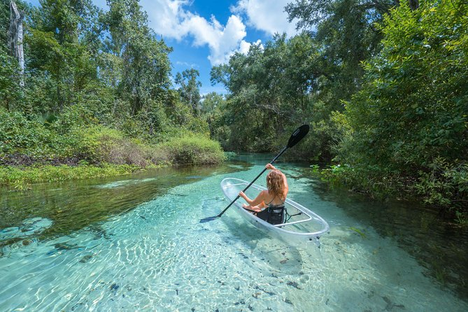 2-Hour Glass Bottom Guided Kayak Eco Tour in Rock Springs (Small-Group)