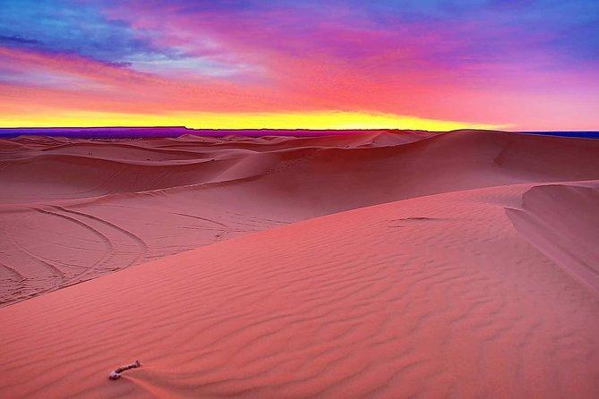 Premium Desert Safari with 45 Minutes of Dune Bashing, BBQ Dinner & Belly Dance