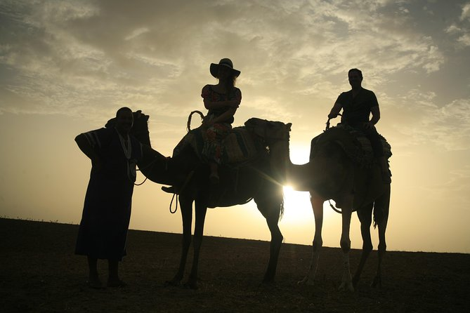 Camel Exprience and magical dinner in Agafay desert