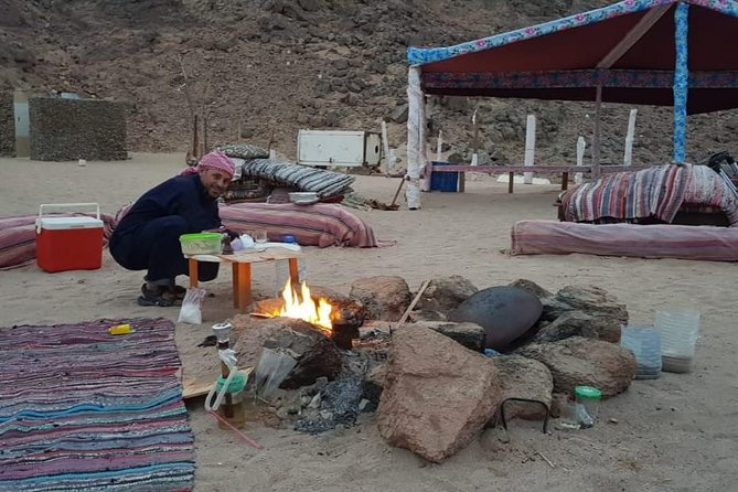 Camel ride & dinner with the Bedouin & star gazing in Sharm el Sheikh