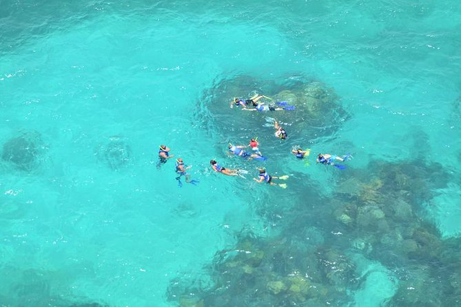 Snorkeling Adventure in Puerto Morelos Includes Lunch, Water and Round Trip.