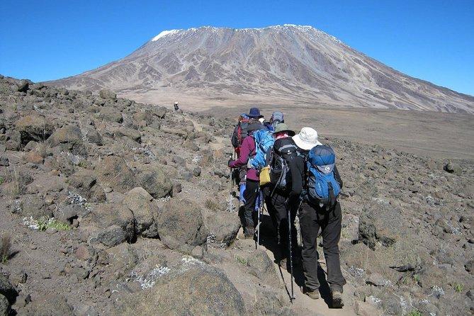Mount Kilimanjaro Rongai Route 6 Days
